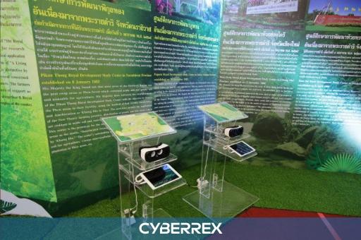 cyberrex-buabat2